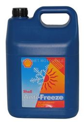 SHELL ANTIFREEZE KON.  5L -  SHELL ANTIFREEZE.